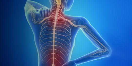Multiple Sclerosis - Samen Praktijk voor Ergotherapie regio bollenstreek